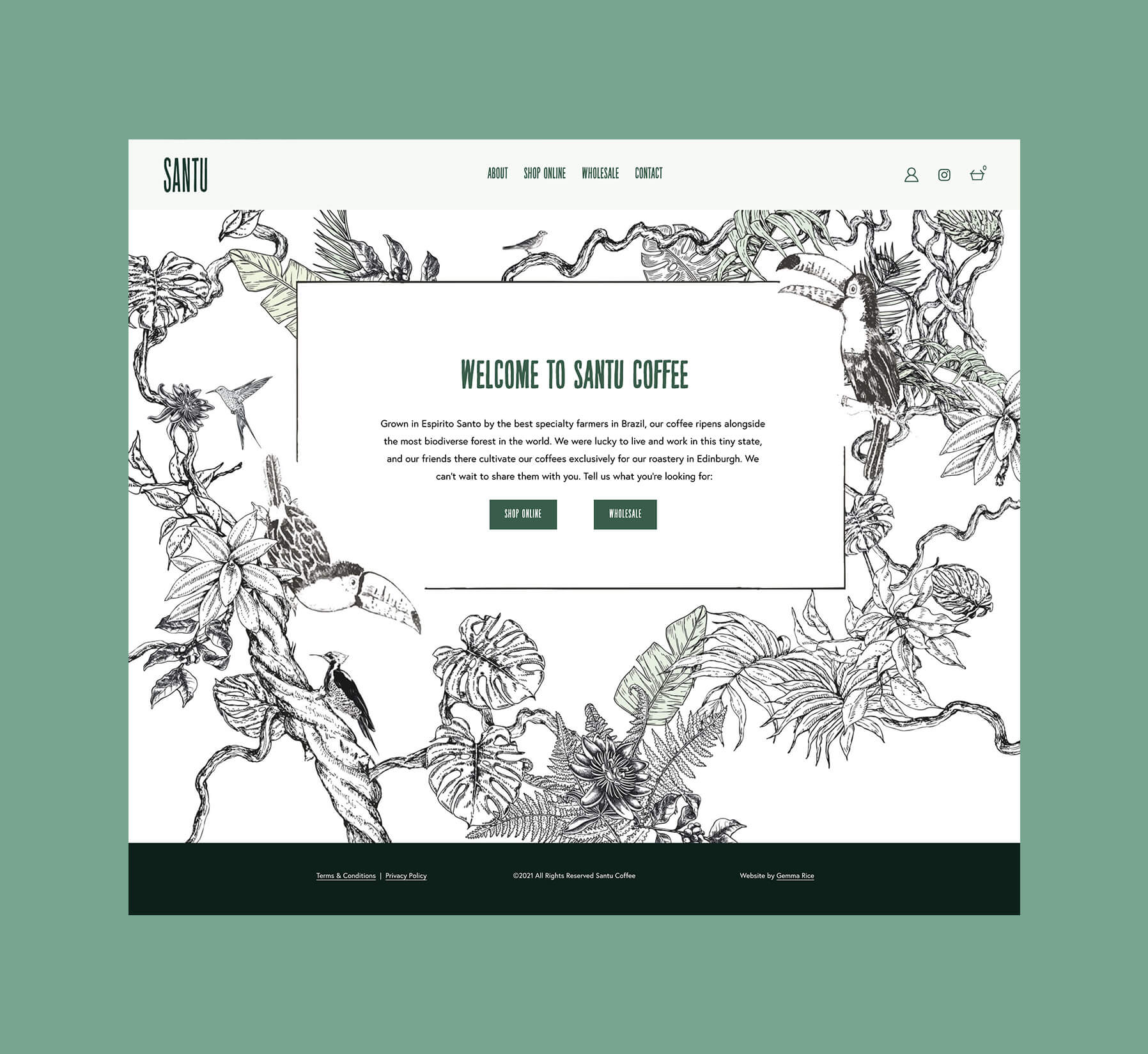 Website design for coffee company with rainforest illustration
