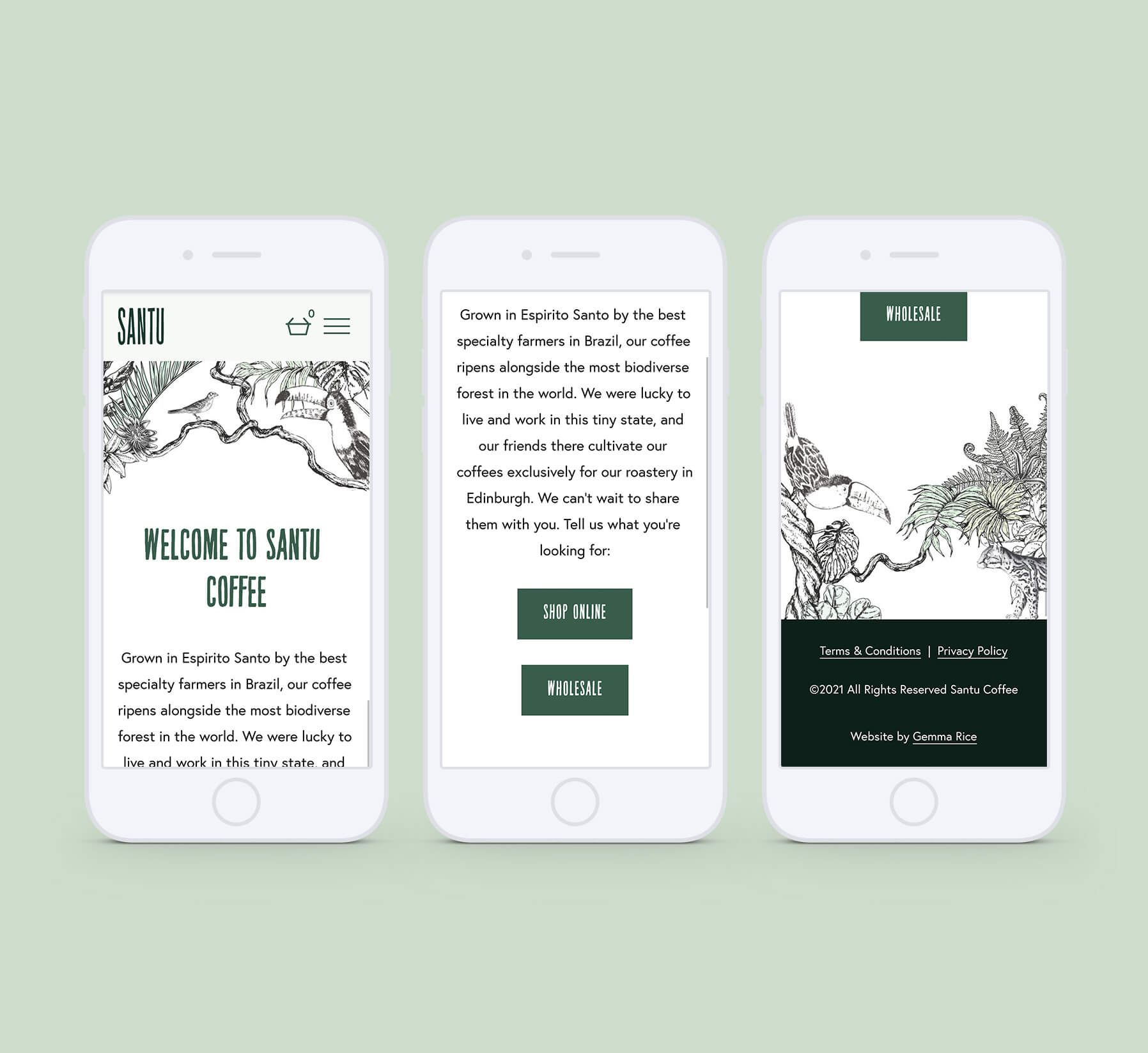 Mobile website designs for coffee company with rainforest illustration and animals